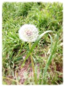 A-Birthday_mini